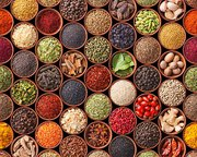 Agri Product Exporter in India - Alram Exports