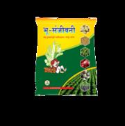 Organic Fertilizer (Bhu-Sanjivni)