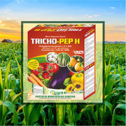 Trichoderma Harzianum Best For Crops By Peptech Biosciences