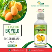 Paclobutrazol,  The Ultimate PGR for Big Yield Tomorrow